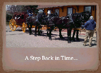 4-Up Hitch of Black Percherons with Wells Fargo Stage Coach